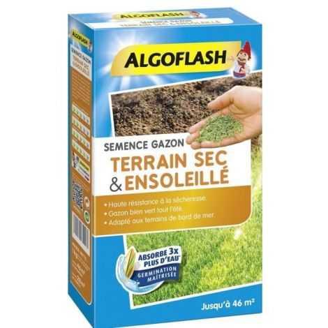 ALGOFLASH Semences gazon...