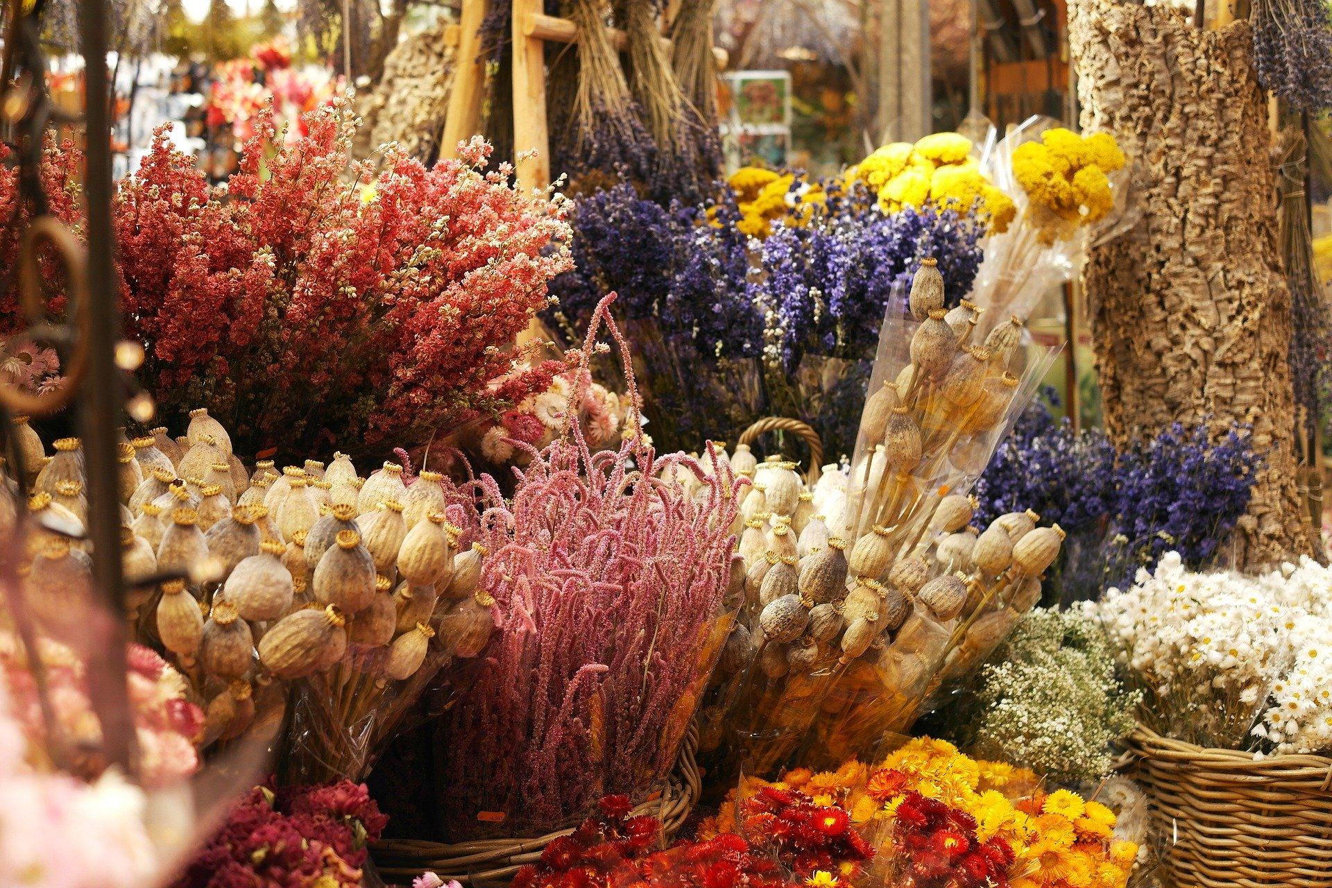 fleurs séchées déco tendance
